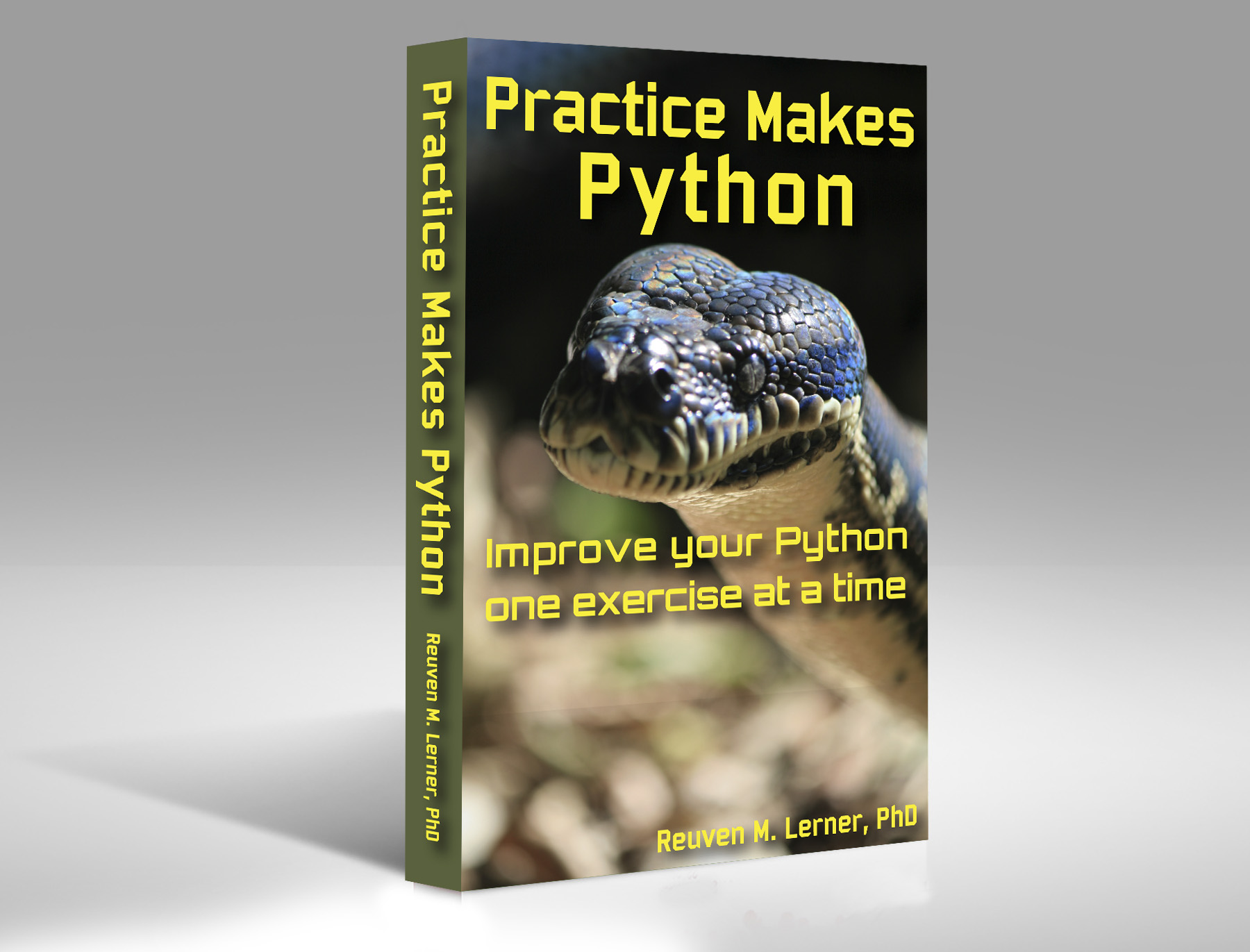 "Cover of ""Practice Makes Python"""